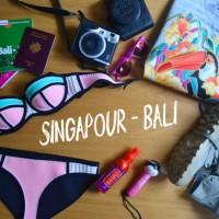 blog voyage singapour bali
