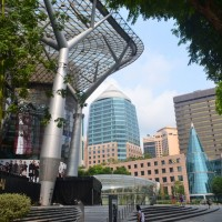 Singapour – Jungle urbaine