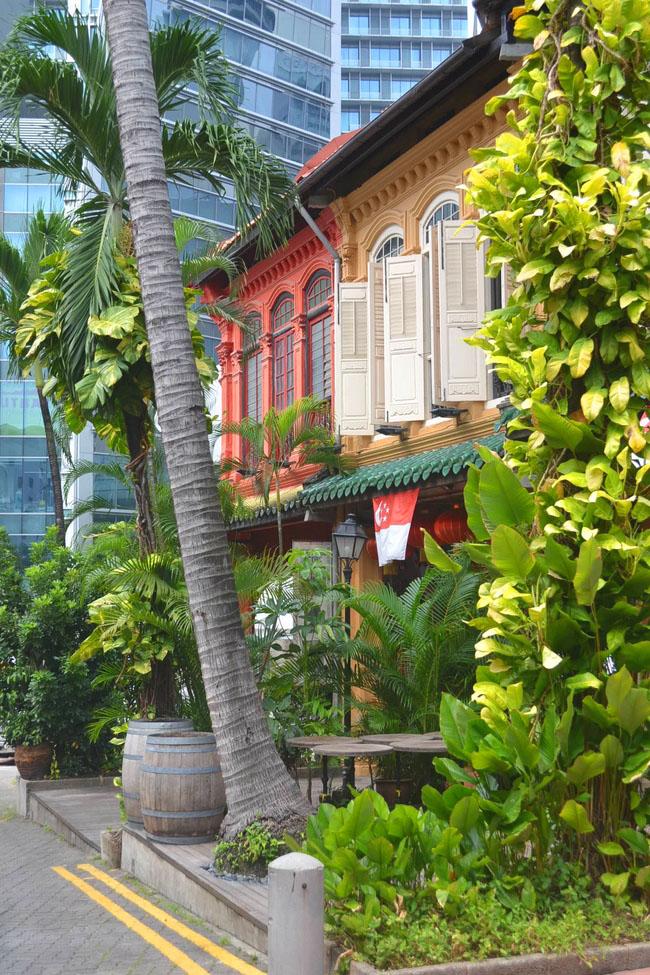 Singapour,la jungle urbaine   VF