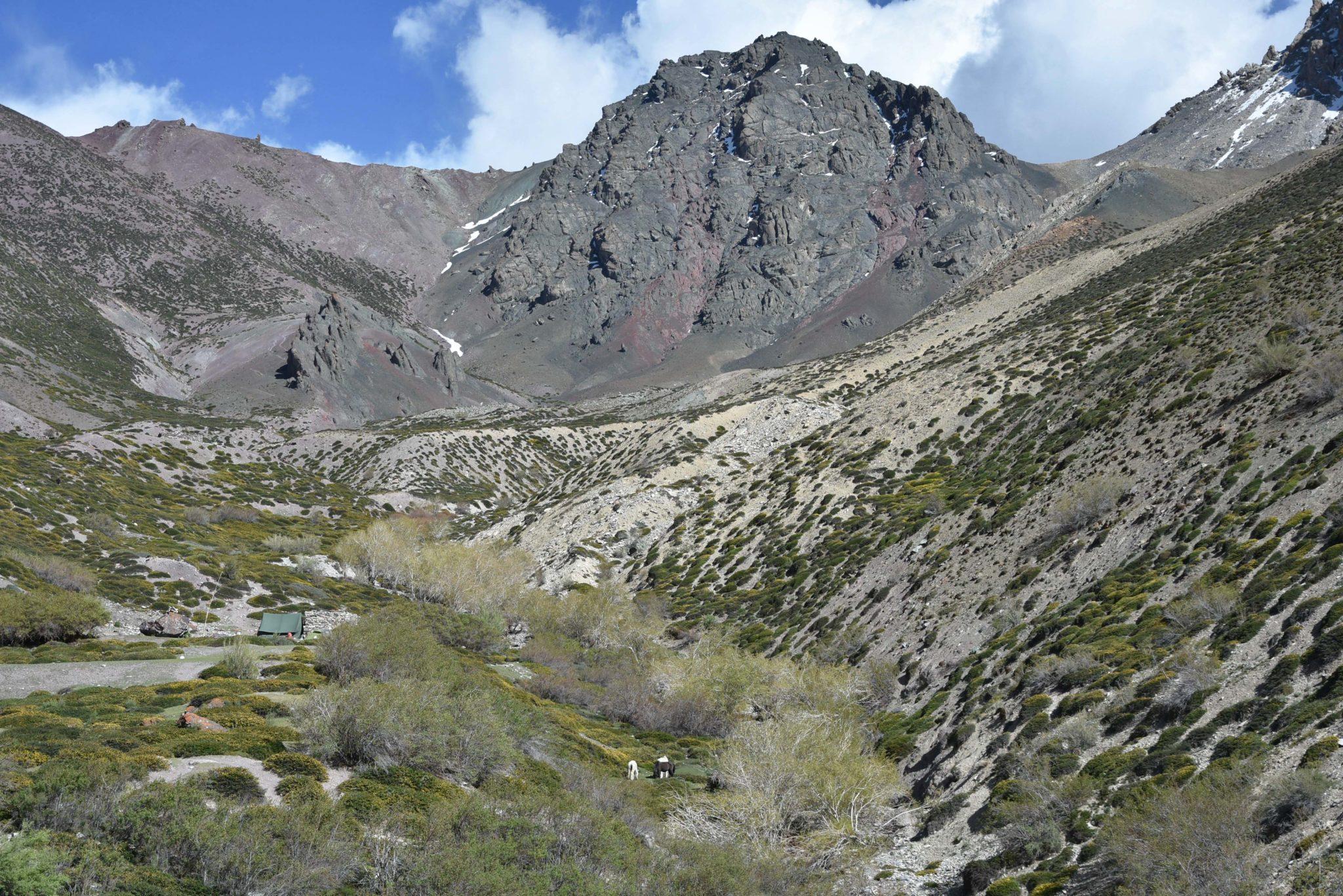 trek ladakh himalaya indien